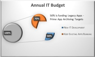 Annual IT Budget
